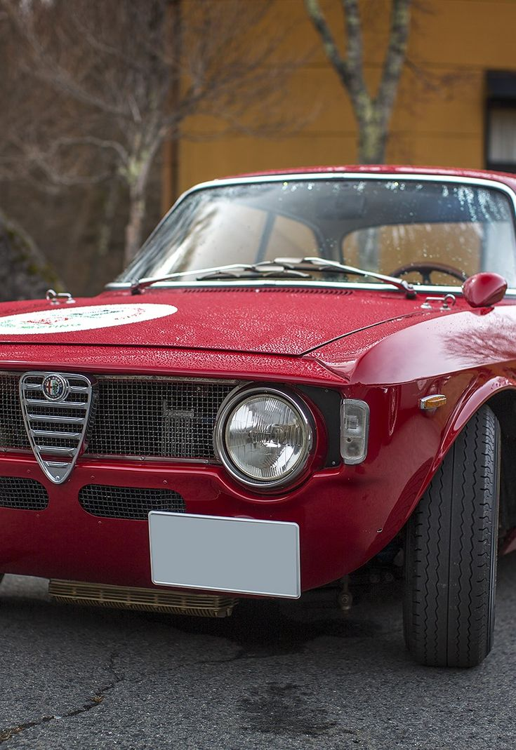 567 Best Images About Alfa Romeo Giulia GT On Pinterest