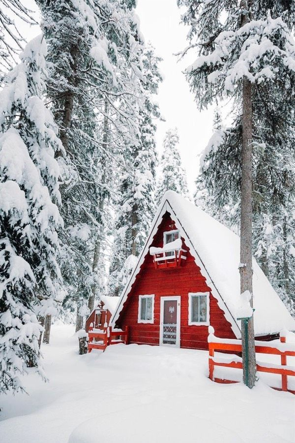 22 Must See Winter Cabins Deep In The Woods Deluxe Timber Winter Cabin Cabins In The Woods Cabin Life