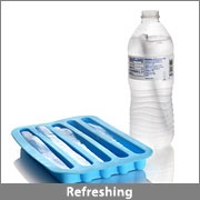 Water Bottle Stick Ice Cube Tray $4.99