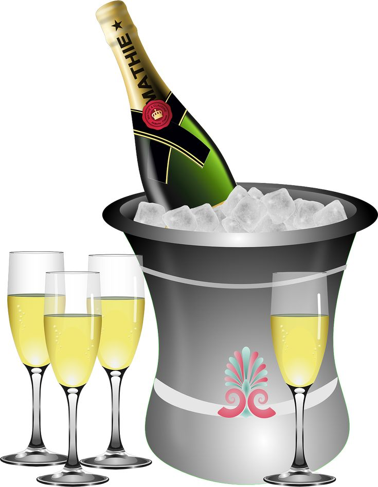 Verjaardag, Mousserende Wijn, Fles, Emmer, Viering