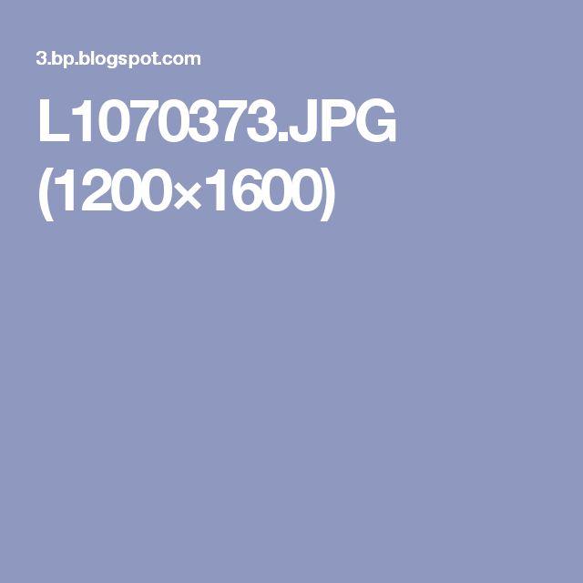 L1070373.JPG (1200×1600)