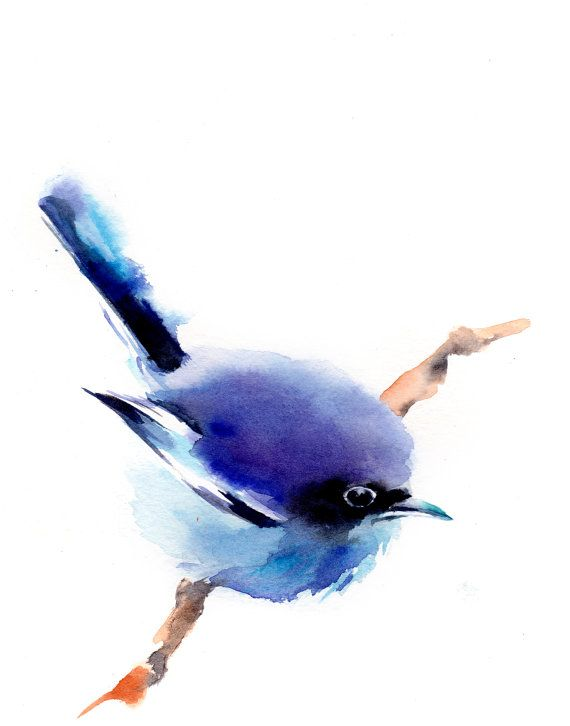 Blue Bird Watercolor Painting Art Print, Bird Art, Watercolour Wall Art