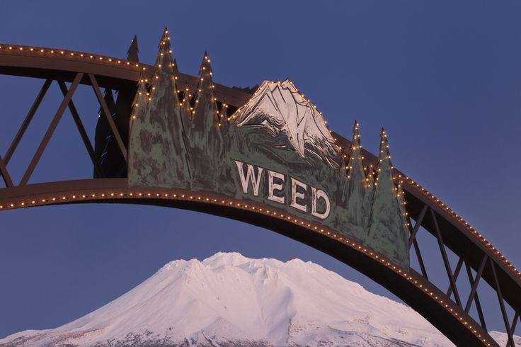 The famous sign in Weed, California frames an evening view of Mount Shasta.