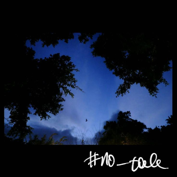 No tale #skantzman #no_tale #heraklion #crete #sky #trees #velvia #park #bird #birds #fujix100t #fuji #x100t #28mm #manolisskantzakis #photography