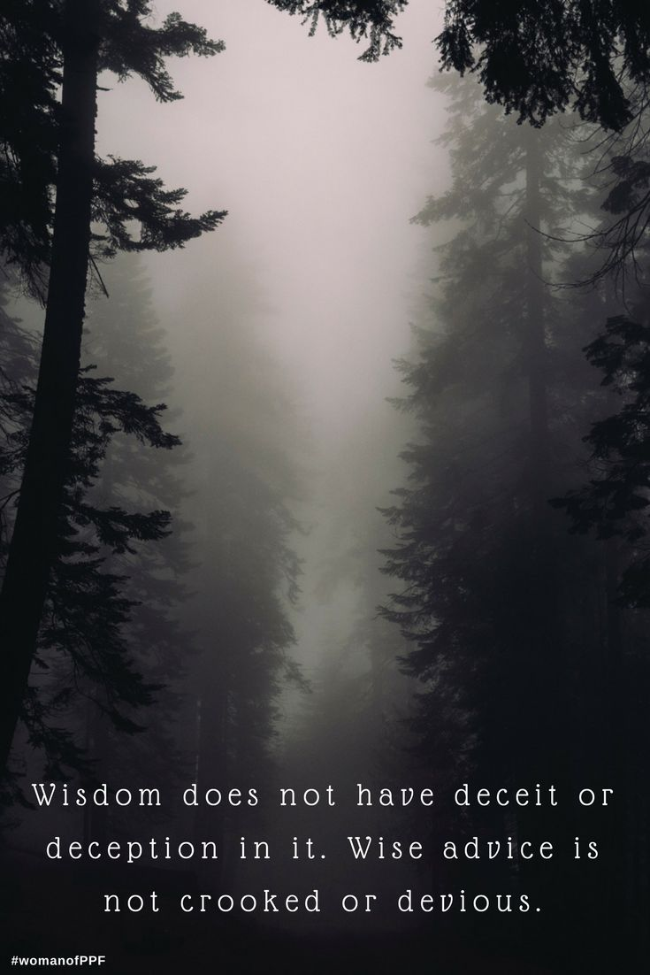 "We learn in the book of Proverbs that wisdom does not have deceit or deception in it. Wise advice is not crooked or devious.  ""Listen to me! For I have important things to tell you. Everything I say is right, for I speak the truth and detest every kind of deception. My advice is wholesome. There is nothing devious or crooked in it."" Proverbs 8:6-8 NLT  #womanofppf #Proverbs"