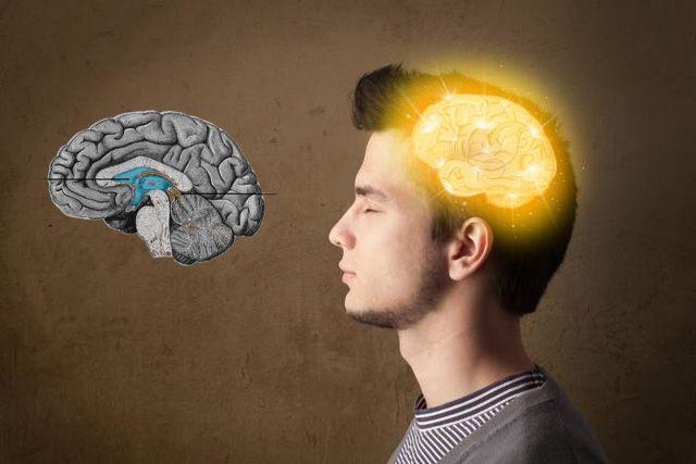 Η επίφυση, ένας ενδοκρινής αδένας που βρίσκεται στον εγκέφαλο, λέγεται ότι είναι η έδρα της ψυχής. Αυτός ο μικρός αδένας τον οποίο αποκαλούν και Τρίτο Μάτι,