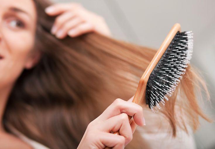 Freesia - ماذا يحدث عندما لا نغسل فرشاة الشعر اسبوعيًا