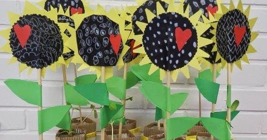 Paljon onnea ja auringonkukkien loistoa kaikille äideille!       Olemme eskarilaisten kanssa kevään aikana tutustuneet erilaisiin siemeniin...