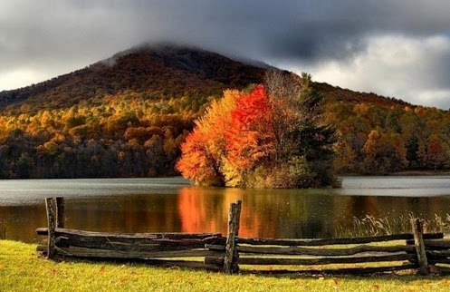 Rural scenery with lake