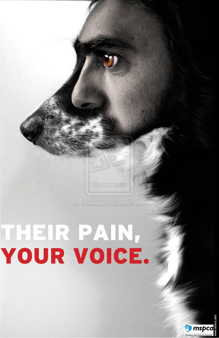 Animal Rights Poster 1 by ~ShaunaLeavitt on deviantART