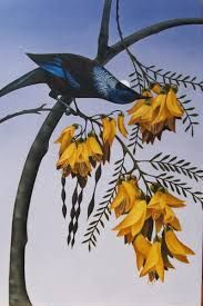 tui on kowhai - Google Search