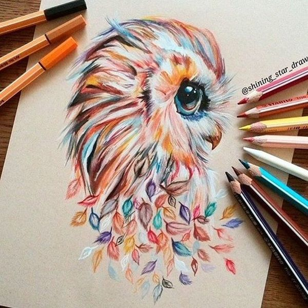 40 Creative And Simple Color Pencil Drawings Ideas Owls Drawing Color Pencil Drawing Drawings