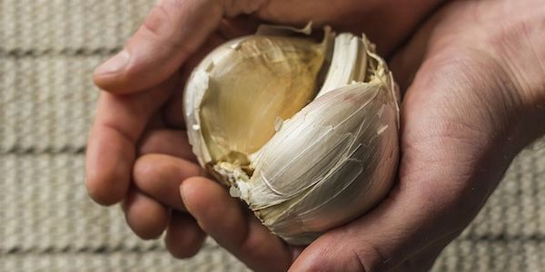 Les bienfaits de l'ail peuvent vous aider en dehors de la cuisine : pour la santé, la beauté et, même, le bricolage ! Voici 13 utilisations étonnantes de l'ail que vous ne connaissiez pas.  Découvrez l'astuce ici : http://www.comment-economiser.fr/bienfaits-surprenants-ail.html?utm_content=buffera82b8&utm_medium=social&utm_source=pinterest.com&utm_campaign=buffer