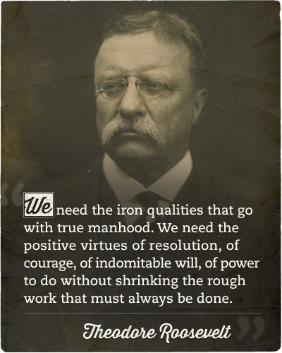 Theodore Roosevelt Quotes: Roosevelt Quotes, What It Takes And Quotes