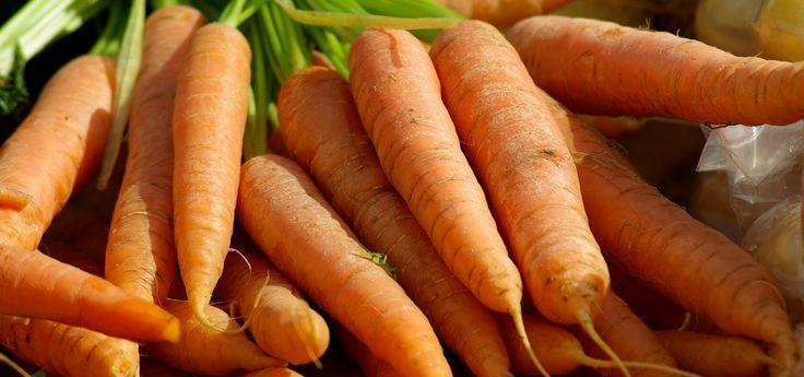 r ussir la culture des carottes jardin potager semer. Black Bedroom Furniture Sets. Home Design Ideas