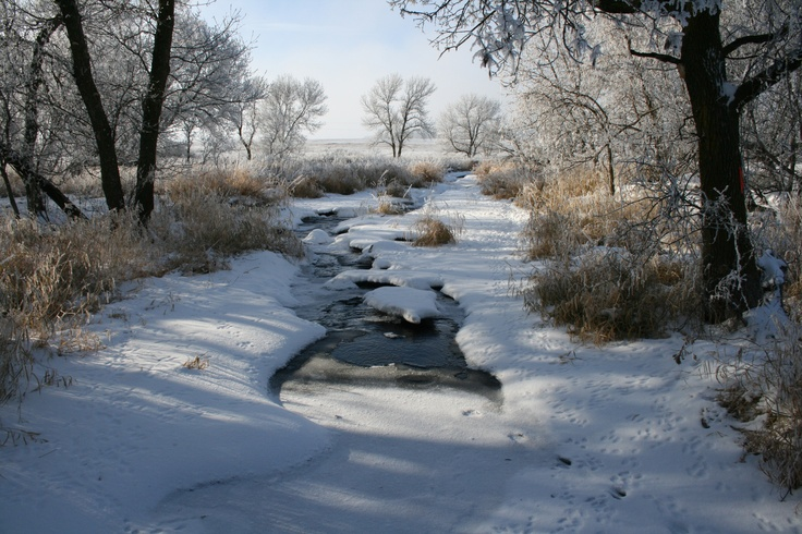 Minnesota Winter Scenery - Bing Images | Minnesota - A ...