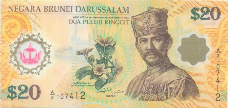 An image of B$20. #20 #Currency #Brunei: Southeast Asian, 20 Currenc, Currenc Brunei, Asian Currenc