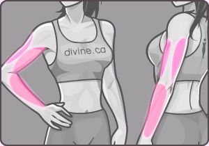 Exercise Finder, health - divine.ca - arm workout