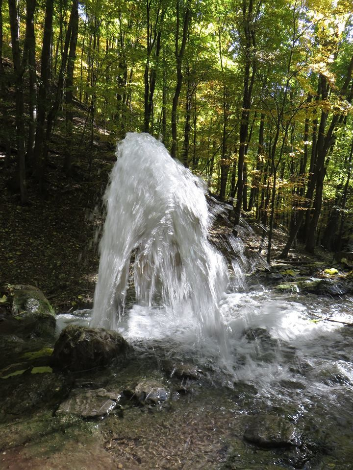 Vöröskő forrás (időszakos) a Bükk hegységben