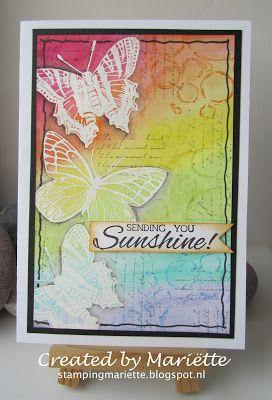 Nuance rainbow butterflies