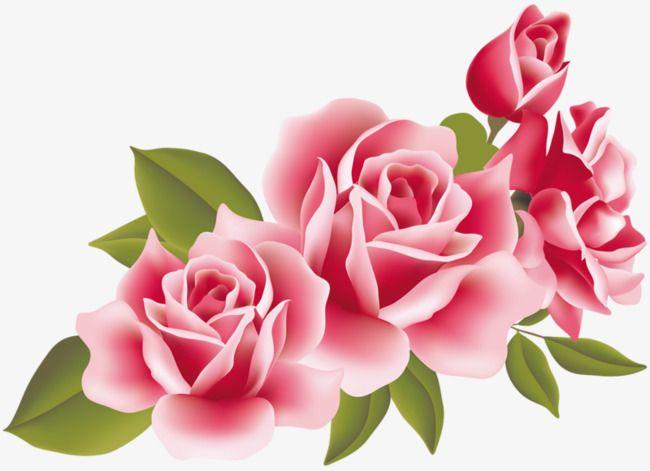 Pin Em Kwiatki