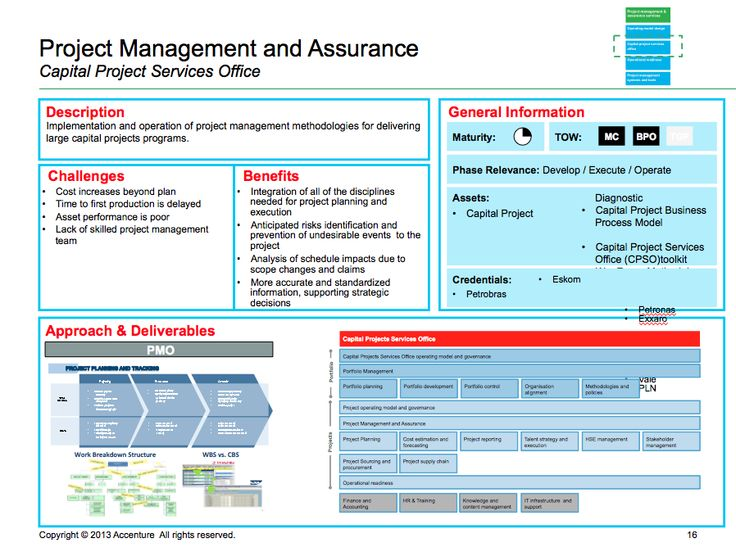 Accenture PMO template Program and Project Management - project schedule sample