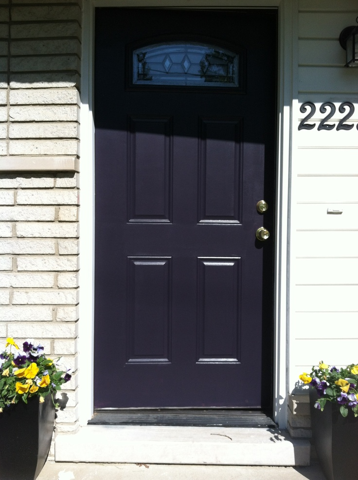 Painted the front door black swan by sherwin and williams for Doors for front door