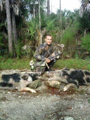 My Florida Backwoods: Florida Hog Hunting