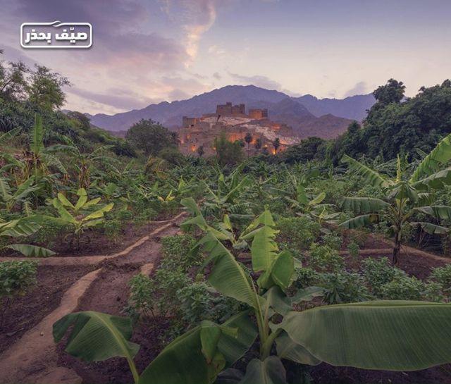 المملكة العربية السعودية قرية ذي عين في منطقة الباحة In 2020 Natural Landmarks Nature Landmarks