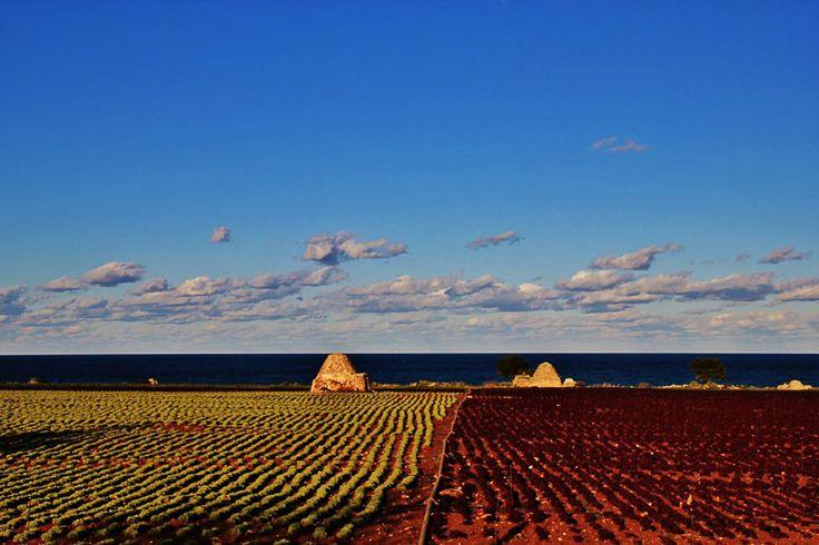 #Adriatic coast, Cozze-San Vito, #Puglia
