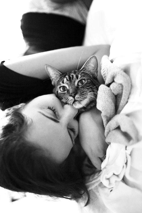 : Snuggles, Coffee Shops, Kitty Cuddling, Cat Hug, Blue Eye, Crazy Cat Lady, Mornings, Animal, Coffe Shops
