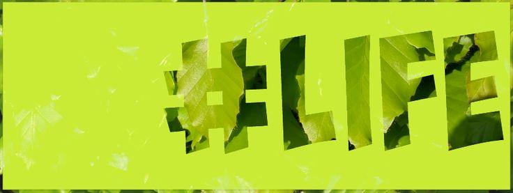 #life green leaves