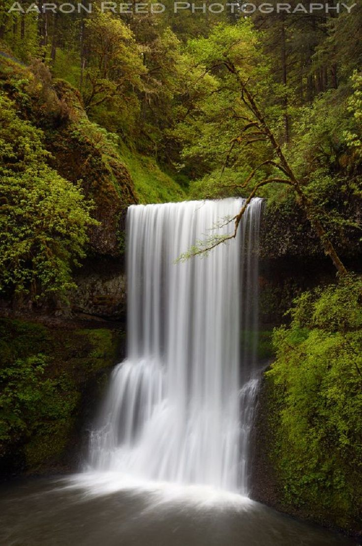 Silver Falls State Park, Oregon TOP 10 USA Waterfalls