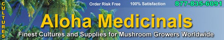 Low Cost / Low Tech Methods to Grow Mushroom - Aloha Medicinals Mushroom Culture Bank