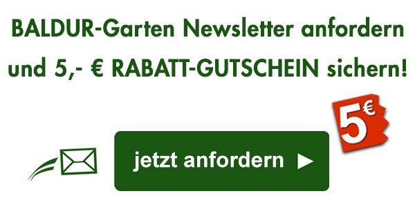 Balkonpflanzen Online Kaufen Bestellen Bei Baldur Garten Nel 2020