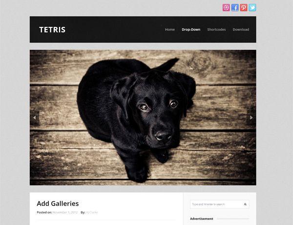 25 Fresh & Free Portfolio WordPress Themes