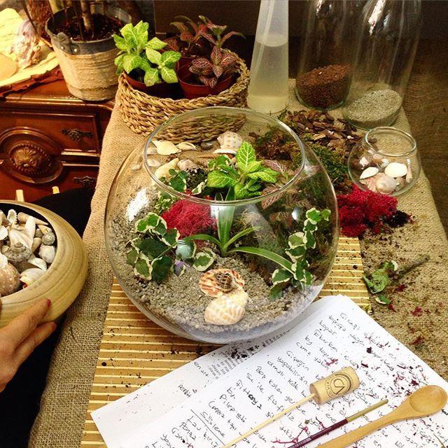 Keyifli geçen bir workshop daha gerçekleştirdik 🌿 Bireysel workshop'larımız için info@terraquadesign.com adresinden bize ulaşabilirsiniz 🌞 #terraquadesign #workshop #terrarium #atölye #teraryum #etkinlik #bitki #lovegreen #naturelovers #botanical #fittonia #pilea #saturday #homedecor #decorative #gift #teraryumworkshop #toprak #decoration #tagsforlikes #instacool #istanbul