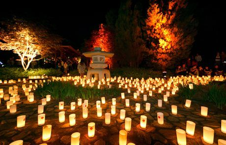 The Japanese gardens host a huge Candle Festival each October. Also the best place for an evening picnic of sushi and okonomiyaki!