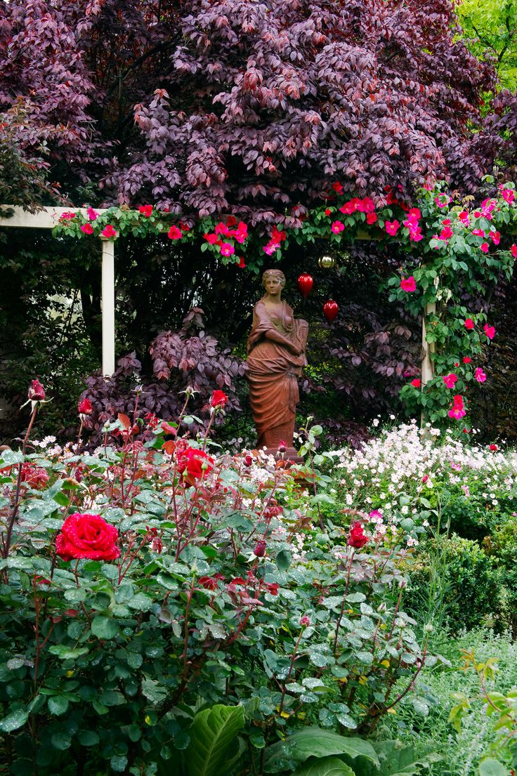 'Nancy Hayward' pink roses frame a garden statue in a country garden on the outskirts of the Barossa Valley. Photography: Brigid Arnott | Story: Australian House & Garden