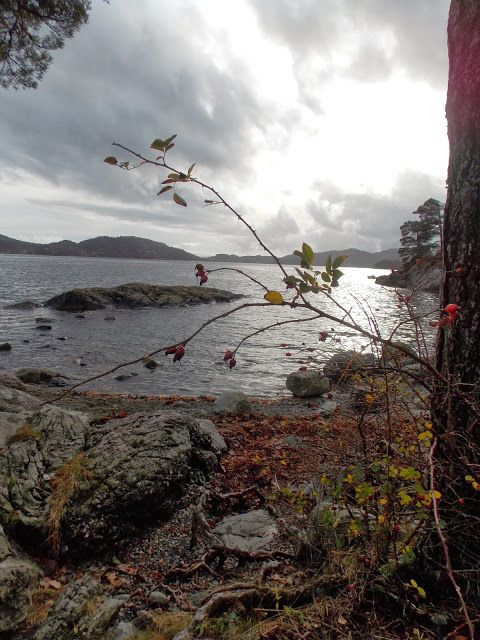 Beautiful Norway and Au Pair Patrycja's blog - follow it