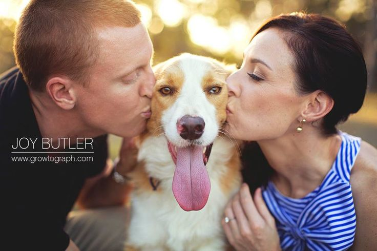 Engagement shoot with their dog.