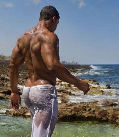 incontri gay reggio brazilian male escort