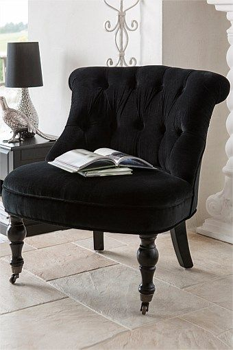 Furniture Collection - Occasional Chair
