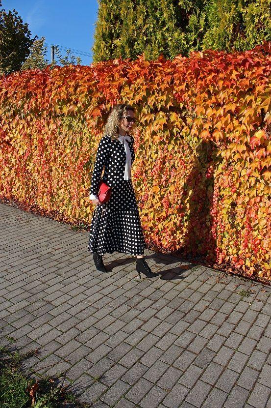 #ootd #fashionblogger #slovakblogger #polkadots #chloe #chloebag #streetstyle #fallstyle #oktoberstyle