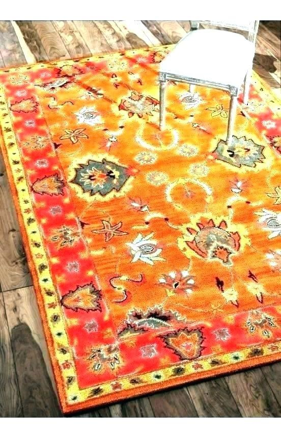 Enchanting Burnt Orange And Brown Area Rugs Photos Beautiful