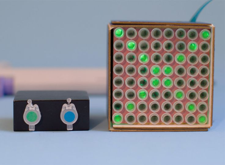 play tetris with biological pixels made from jellyfish DNA | Netfloor USA