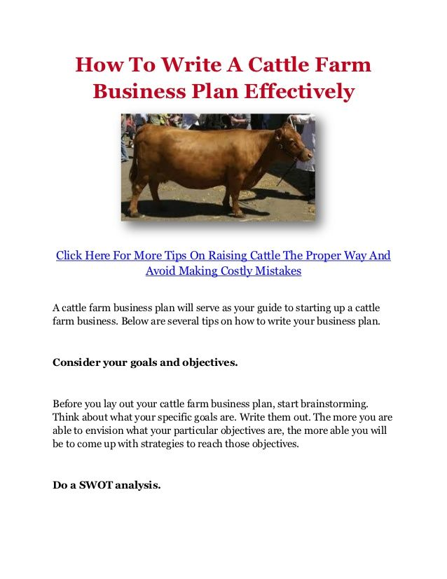 Cattle Rearing Business Plan (Download PDF/Doc)