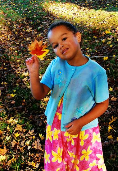 Complete guide to fall foliage tours with kids