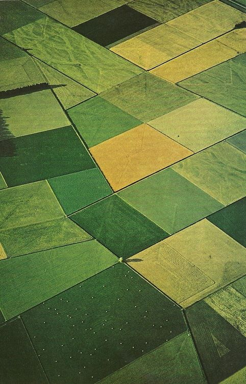 The patchword of greens (fields in new zeland from the sky) These are the outdoor colour palate i would look at.  #armadilloflip