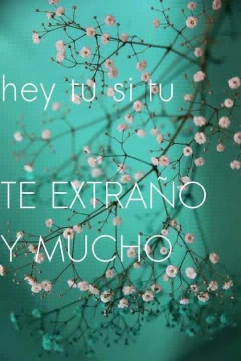 Porque te quiero